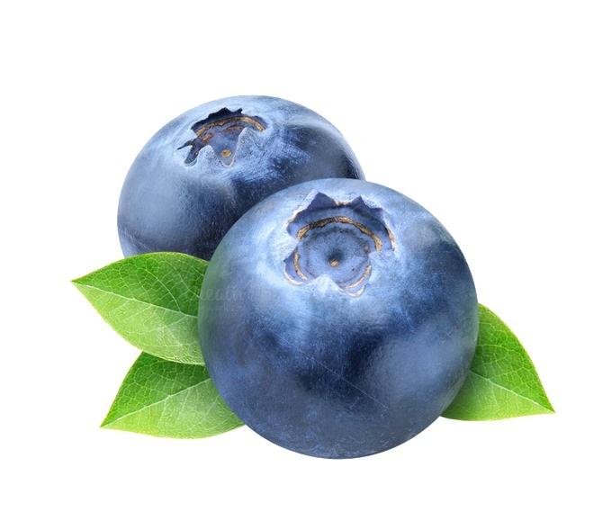 https://mlyhp2jgwxcj.i.optimole.com/w:auto/h:auto/q:auto/https://www.bolehshop.id/wp-content/uploads/2019/01/Blueberry-Photos.jpg