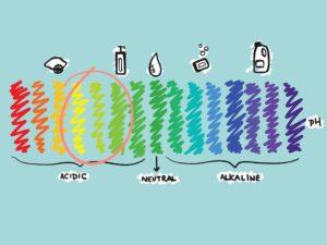Semua Tentang pH dan Kulit Wajah yang Perlu Kamu Ketahui - Bolehshop
