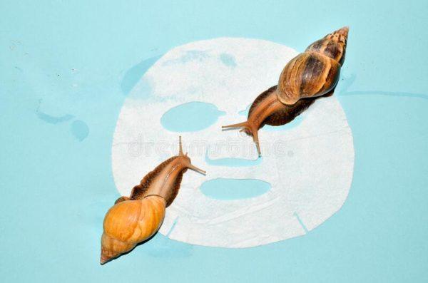4 Fakta Menarik Snail Slime, Ingredients Skincare yang Lagi Hits - Bolehshop